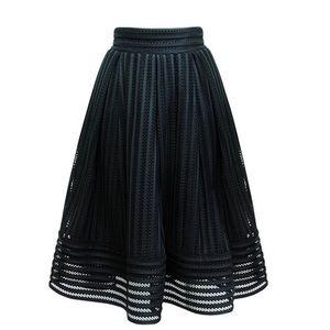 Dresses & Skirts - 🆕Black Textured Net Midi A-Line Skirt